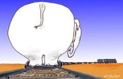 2005-02-26-darwin-ralil-white-elephant-450