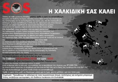2013-04-13-soshalkidiki