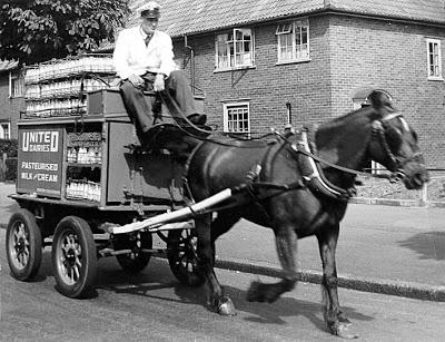 d-horse-milkcart-1950
