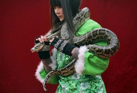 B_Id_363727_Snake