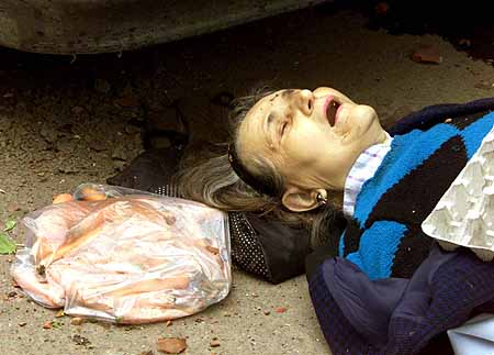 DBO01D:YUGOSLAVIA-BOMBING:NIS,YUGOSLAVIA,7MAY99 - A woman lies dead beside a bag of carrots May 7 after a NATO daylight air raid near a market over the town of Nis some 200 kilometres south of Belgrade. Two residential areas and a hospital were hit by what appears to be cluster bombs killing 15 people, injuring scores with shrapnel and destroying some 30 homes. db/Photo by Desmond Boylan REUTERS